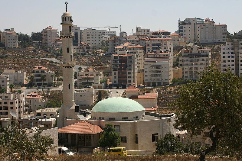 Choses vues et entendues en Israël-Palestine: quelques aperçus de l'occupation…