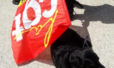 Chronique d'une action anti-loi travail, de Mulhouse à Colmar