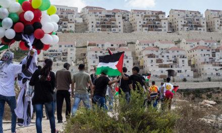 Wadi Fukin: des Alsaciens s'engagent pour des terres palestiniennes