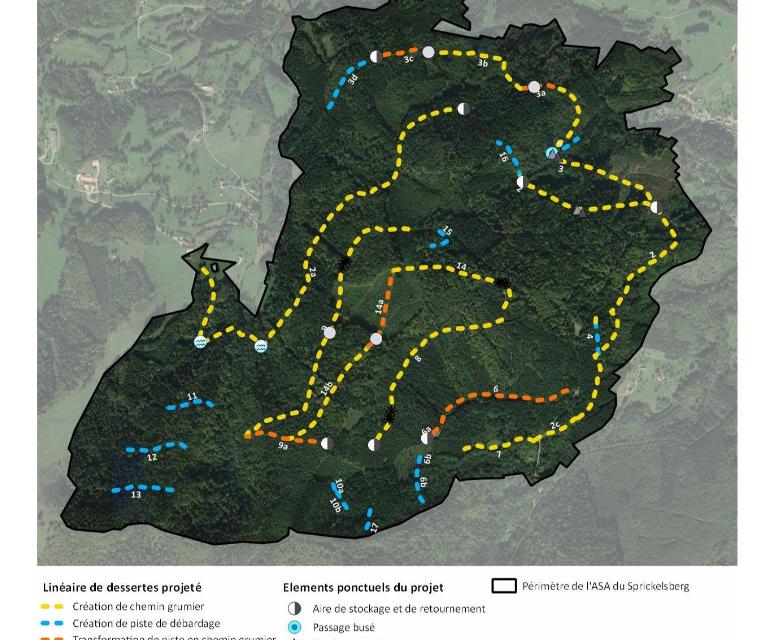 "Un projet de desserte forestière menace le massif du ""Sprickelsberg"""