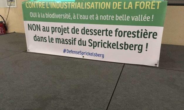 Entre Kirchberg et Dolleren, des têtes de bois contre le collectif de défense du Sprickelsberg