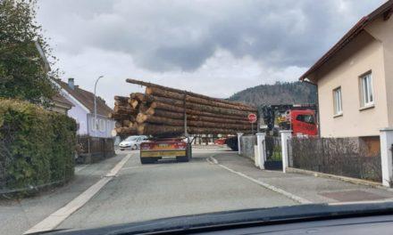 Massif du Sprickelsberg, entre Dolleren et Kirchberg: le feuilleton s'enracine…