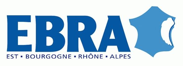 De Strasbourg à Mulhouse ET DANS L'est, une presse régionale en situation de monopole : retour sur LES CAUSES D'UNE INDIGENCE démocratique – PArtie 1