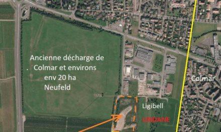 A Colmar, le lindane pollue (aussi) la campagne électorale de Gilbert Meyer