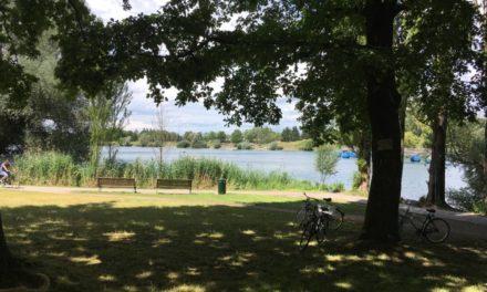 Ballade photographique à Freiburg im Breisgau, où les arbres apostrophent les passants au bord d'un lac ressuscité