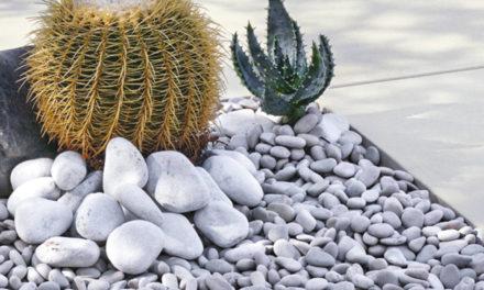 Dans le Bade-Wurtemberg : des écologistes jettent la pierre aux propriétaires de jardins, plutôt qu'aux industries polluantes…