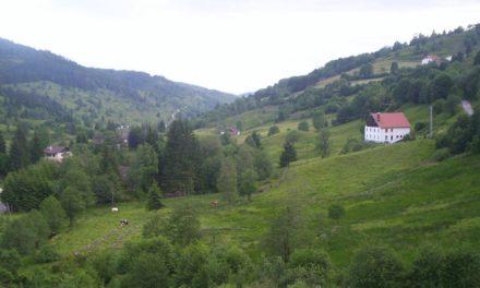 SOS massif des Vosges !