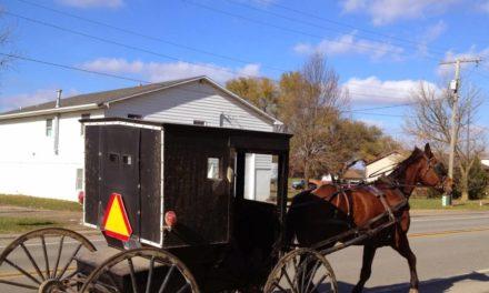 """Le """"contre-modèle Amish"""" brandi par Macron : depuis l'Alsace jusqu'aux USA, retour sur une communauté défricheuse d'un futur soutenable"""