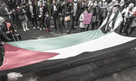 A Mulhouse, une digne manifestation pour la paix en Palestine
