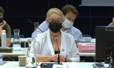 Conseil municipal de juin 2021 à Mulhouse : des absents et des torts, une maire autopartageuse, et une gauche qui tient son rôle d'opposante